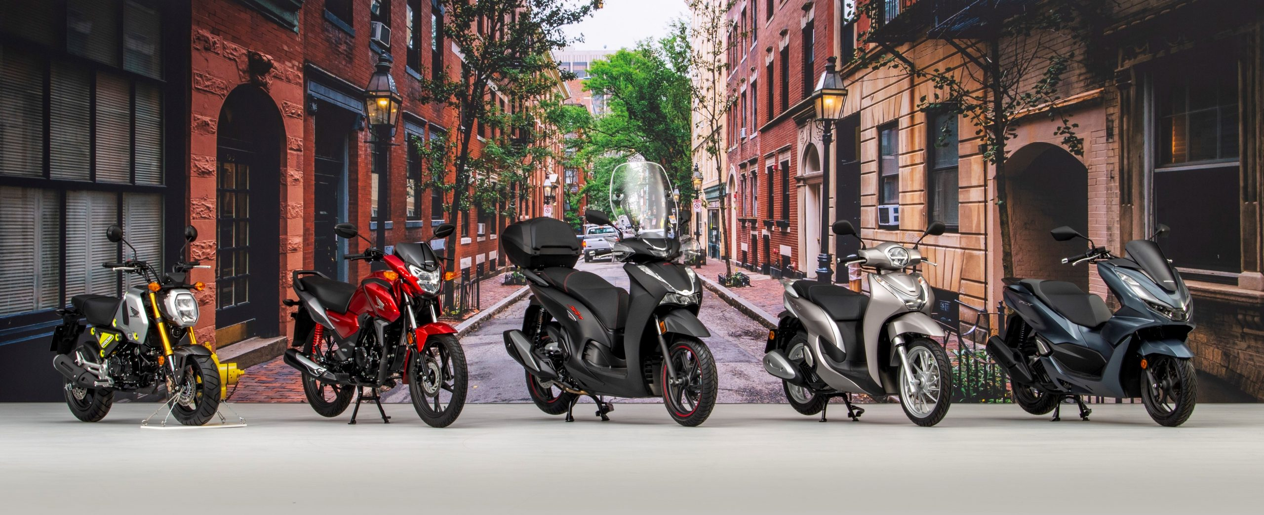 312597 Honda Announce Seven More Additions To Its Comprehensive 2021 European Scaled